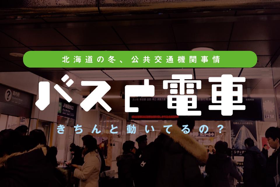 【実体験】冬の北海道、交通機関はどの位マヒするのか道民が解説します
